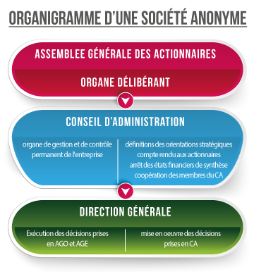 organigramme societe anonyme