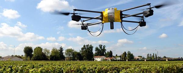 Innovations technologiques : Stimuler l'emploi rural